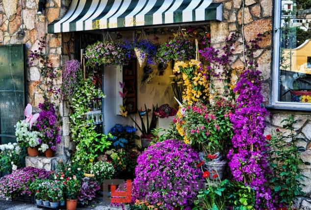 田园风格花店给人以恬静感